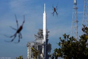 Ilyen magasra repülnek a pókok